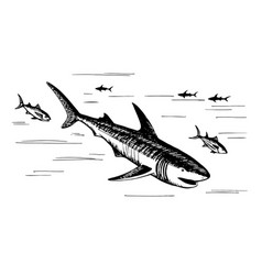 marine fish predators vector image