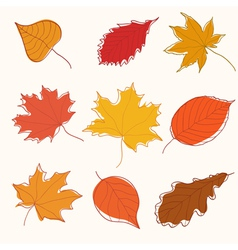 Set of autumn doodle leaves vector image vector image