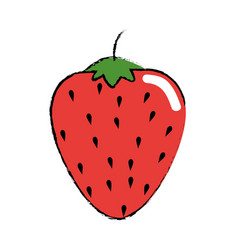 strawberry fruit food vector image