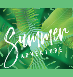 Summer adventure background for posters vector