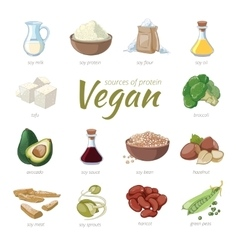 Vegan sources of protein Plant based protein vector image