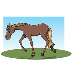 tired horse vector image