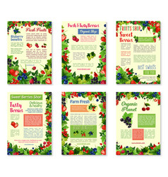 banners for fresh berries and fruits vector image vector image