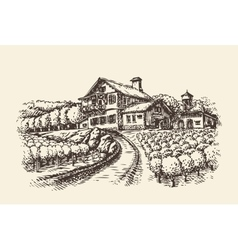Farm landscape Hand-drawn vineyard or agriculture vector image vector image