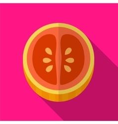 Grapefruit flat icon vector image