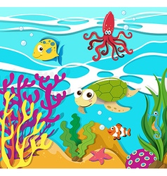 Sea animals swimming in the ocean vector image