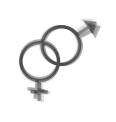 Sex symbol sign gray icon shaked at white vector