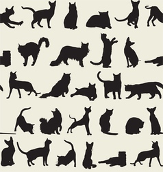 seamless background with cats vector image