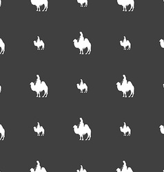 Camel sign Seamless pattern on a gray background vector image