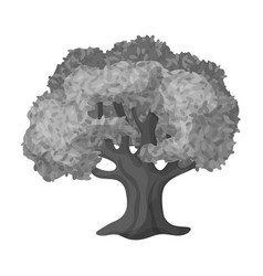 Olive treeolives single icon in monochrome style vector