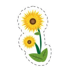 cartoon sunflower spring image vector image
