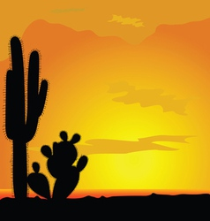 Cactus black in desert vector