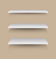 White shelves on brown wall vector
