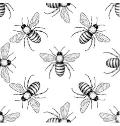 Bee seamless pattern hand drawn insect vector