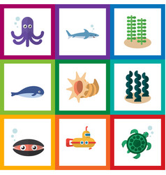 Flat icon nature set of cachalot seaweed vector