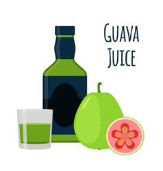 guava juice fruit alcohol flat style tropical vector image vector image