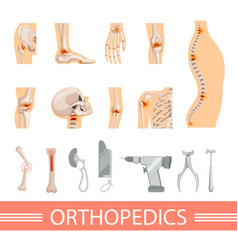 orthopedic icons set human skeleton bones and vector image vector image