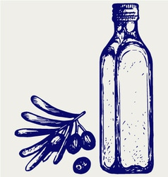 Olive oil and olive branch vector