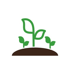 Plant sprout icon garden vector