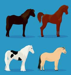 Set of horses vector