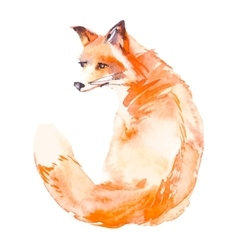 Fox isolated on white background watercolor vector