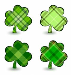 irish clover vector image