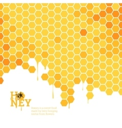 Honeycombs bright background vector