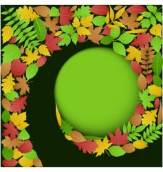 Autumn leaves spiral background vector