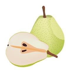 Isolated pears vector