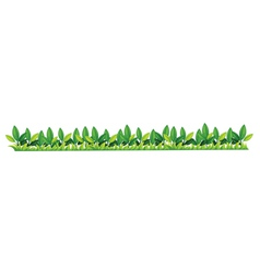 Grass bar border vector