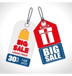 Big sale tags gifts discounts vector