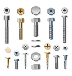 Bolts and screws vector