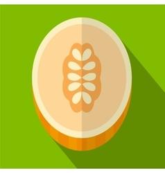 Melon flat icon vector image vector image
