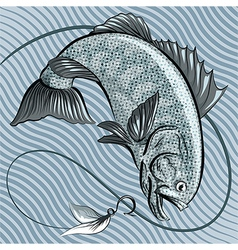 The fish in grey vector image
