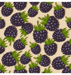 Blackberry seamless pattern vector