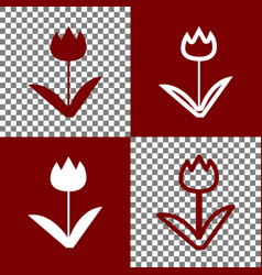 tulip sign bordo and white icons and line vector image vector image
