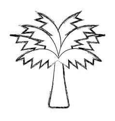 Figure palm tree with leaves and vegetation vector
