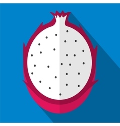 Fruit flat icon vector image