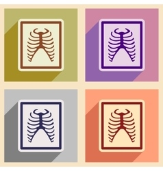 Icons of assembly x-rays of ribs in flat style vector