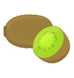 kiwi cartoon vector image vector image
