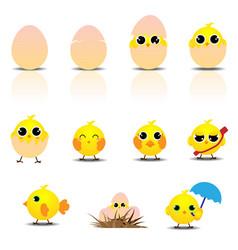 cute baby chicken cartoon set vector image