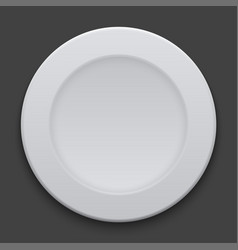 modern dish plate on white background vector image vector image