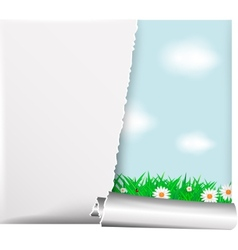 Paper banner vector image vector image