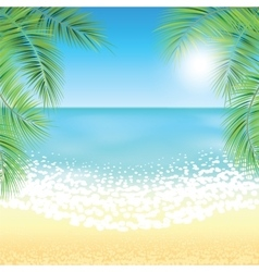 Sand beach and the palm branches at sunset time vector image vector image