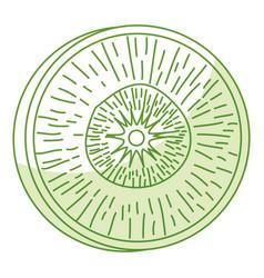 Slice carrot fresh vegetable icon vector