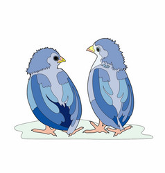 two blue birds vector image vector image