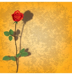Abstract grunge yellow background with rose and vector