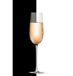 Empty champagne glass on black and white vector