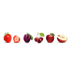 isolated realistic fruit icons strawberry apple vector image vector image