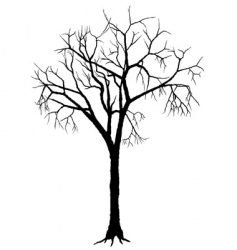 tree silhouette vector image vector image